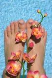 Feet Royalty Free Stock Photos
