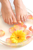Feet And Flowers Stock Photography