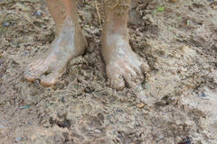Feet And Mud. Stock Photo