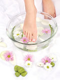 Feet in aromatherapy bowl. Feet dipped in aromatherapy bowl Royalty Free Stock Photo