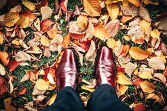 Feet on autumn leaves