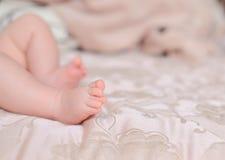 Feet of the baby Stock Photos
