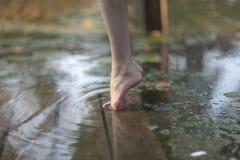 Feet ballerina on tiptoe. Close up.  royalty free stock photography