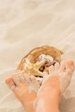Feet and basket of shells Stock Photo