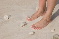 Feet on beach. Feet of a woman standing on beach Royalty Free Stock Photos