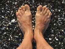 Feet on the beach Stock Photography
