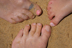 Feet on the Beach. Family's toes, together on a sandy beach stock images