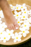Feet and a bowl of floating frangipani flowers Stock Photos