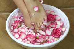 Feet in a bowl with rose petals Royalty Free Stock Images