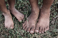 The feet of boy on the grass Royalty Free Stock Photography