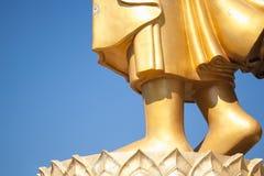 Feet of buddha Stock Image