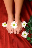 Feet care Royalty Free Stock Images