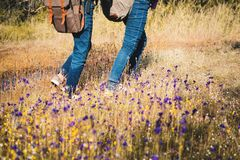 Feet of children walking in beautiful flower filed. Relax time on holiday Royalty Free Stock Photos