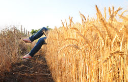Feet coming out of a wheat field Royalty Free Stock Photos
