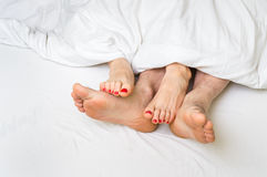 Feet of a couple in bed under the blanket Stock Photos