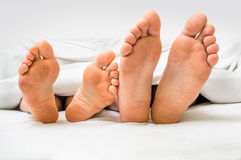 Feet of a couple in bed under the blanket Royalty Free Stock Photography