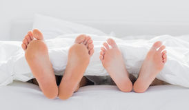 Feet of a couple under the duvet Stock Images