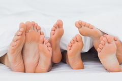 Feet of a family sticking out from the quilt Royalty Free Stock Photo