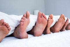 Feet of family sticking out from the quilt Royalty Free Stock Photo