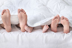 Feet of a family sticking out from the white quilt Royalty Free Stock Photo