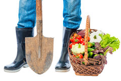 Feet of a farmer in rubber boots and a basket of vegetables on a Royalty Free Stock Photography
