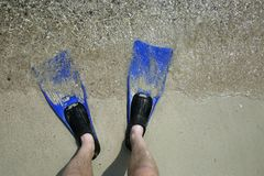 Flippers. Feet in flippers on the shore near the waves Royalty Free Stock Images