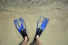 Flippers. Feet in flippers on the shore near the waves Royalty Free Stock Image