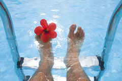 Feet and Flower Royalty Free Stock Photos