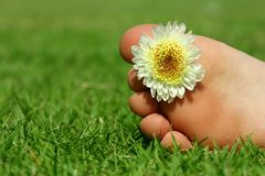 Feet and the flower Royalty Free Stock Photos