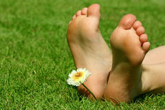 Feet and the flower Royalty Free Stock Photo