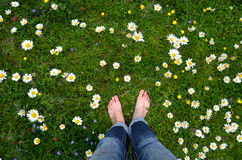 Feet on a flower meadow Royalty Free Stock Images