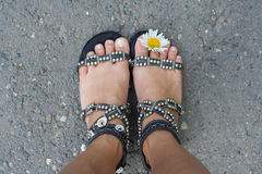 Feet with flower Stock Images