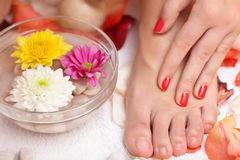 Feet and flowers Stock Images