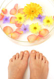 Feet and flowers Stock Photo