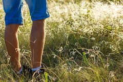 Feet go across the field travel concept royalty free stock photo