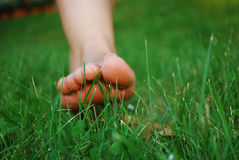 Feet in the grass Royalty Free Stock Photography