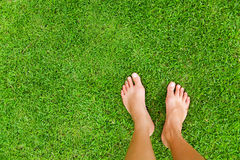 Feet on a grass Stock Images