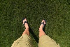 Feet on grass royalty free stock photo