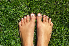 Feet on the grass Stock Image