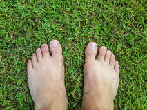 Feet on grass field Royalty Free Stock Photo