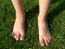 Feet on grass Stock Images