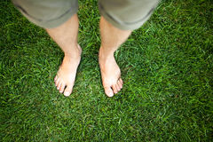 Feet in the grass Stock Images