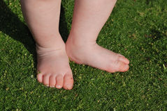 Feet on green grass Royalty Free Stock Photo