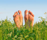 Feet in a green grass stock photo