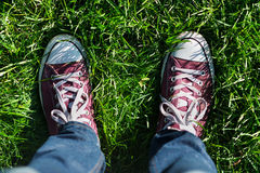 Feet on green grass. Image of male feet in boots on green grass outdoors Royalty Free Stock Images