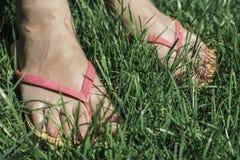 Feet on green meadow. Stock Photos