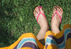 Feet on green meadow Stock Images