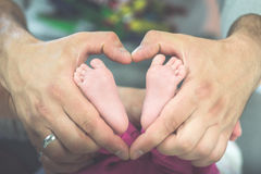 Feet in hands. Little newborn feet in parent hands Royalty Free Stock Photo