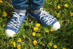 Feet heels together toes apart. On the nature among the dandelions Stock Photography