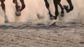 The feet of the horses at the racetrack
